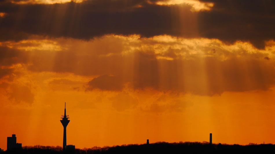 Düsseldorfer Fernsehturm, Clasen/Stiller Fotografie, Udo Clasen, Patrick Stiller, Nachtaufnahme, Langzeitbelichtung, Sonnenaufgang, Sonnenuntergang, rot, grün, blau, orange, gold, gelb, Pflanzen, Baum, Bäume, HDR, Düsseldorf, Duisburg, Natur, Tiere, Wolke