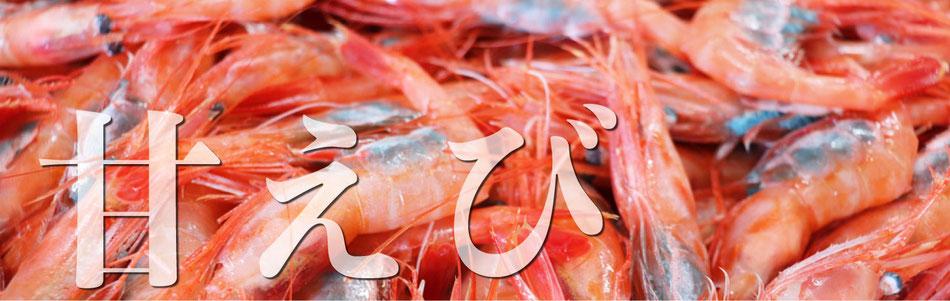 甘海老のネット通販は福井県の真洋水産で