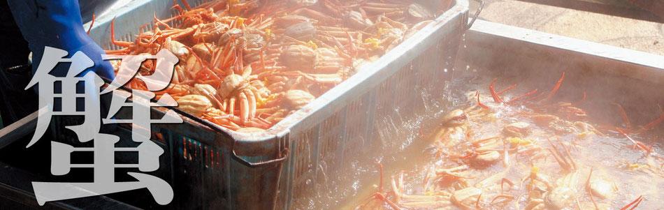 越前ガニのネット通販は福井県の真洋水産で