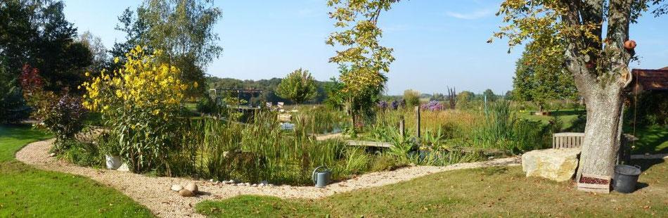 Garten und Schwimmteich - September 2011