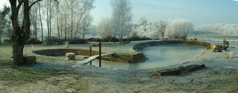 Schwimmteich - Februar 2009