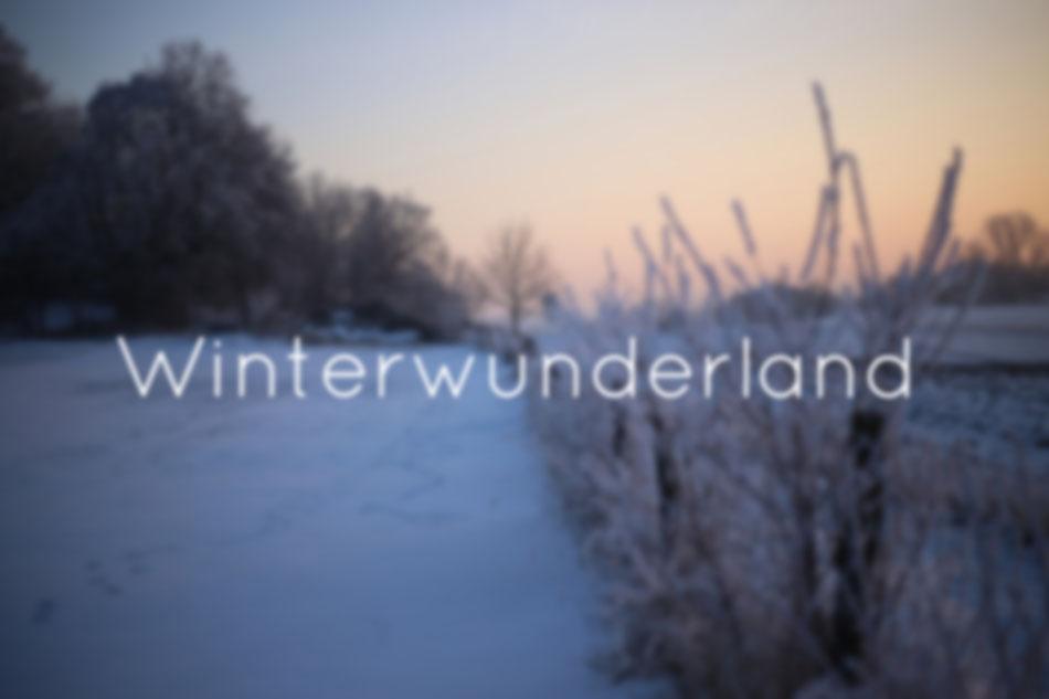 WINTERWUNDERLAND | Komm mit ins Winterwunderland, der Eintritt kostet den Verstand - oder so.
