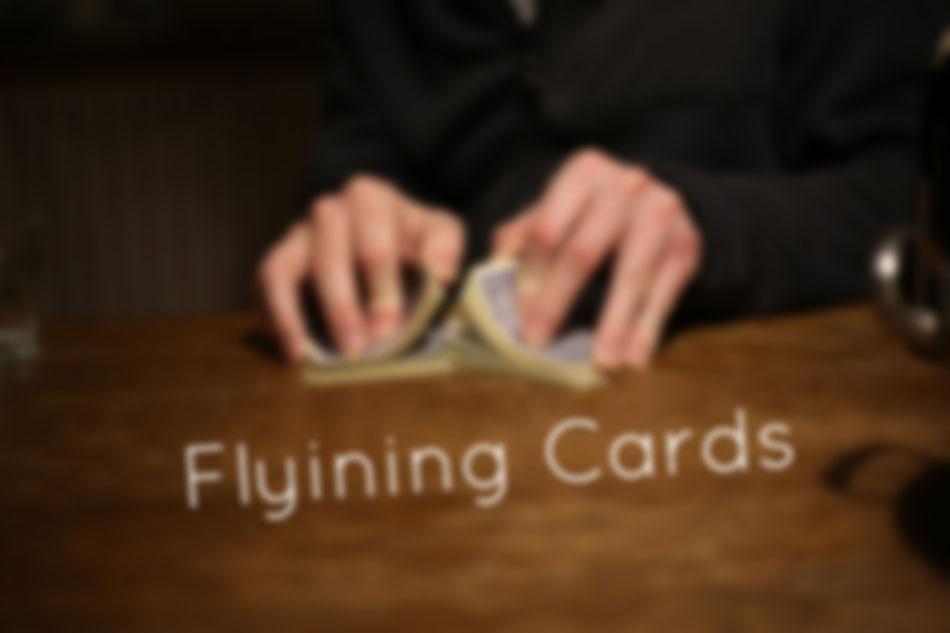 FLYING CARDS  |  Das Leben ist ein Spiel, aber ein sehr schönes!