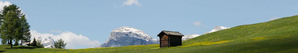 Panorama Seiser Alm - Garni Hotel Clara B&B Riscone Kronplatz Dolomites