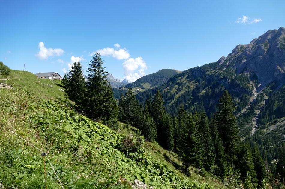 Blick zurück zur oberen Strindenalpe