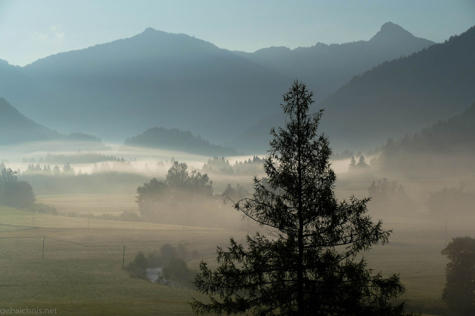 Von Haldensee  aus schwabern die Nebelschwaden rein ins Tal