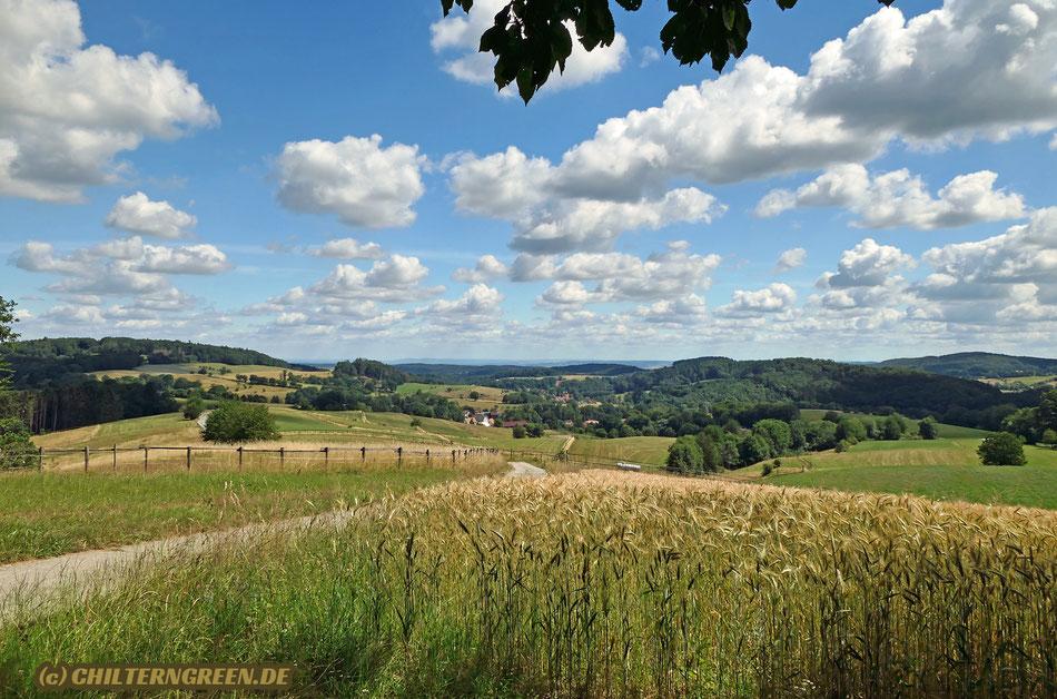 Sommerlandschaft bei Beedenkirchen, mit Blick über das Modautal bis ins Reinheimer Becken.