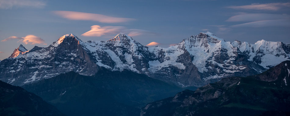The yearly spectacle in August - The large migration - Zebras crossing Mara River. Every animal hopes not to be killed by a crocodile. © Stephan Stamm