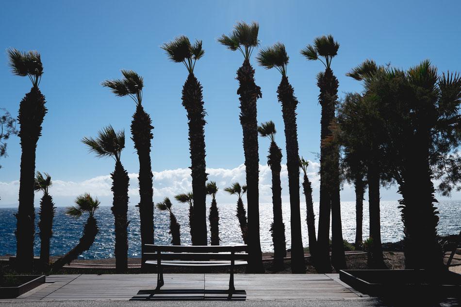 Alcalá, Tenerife, fotografía de familia en Tenerife