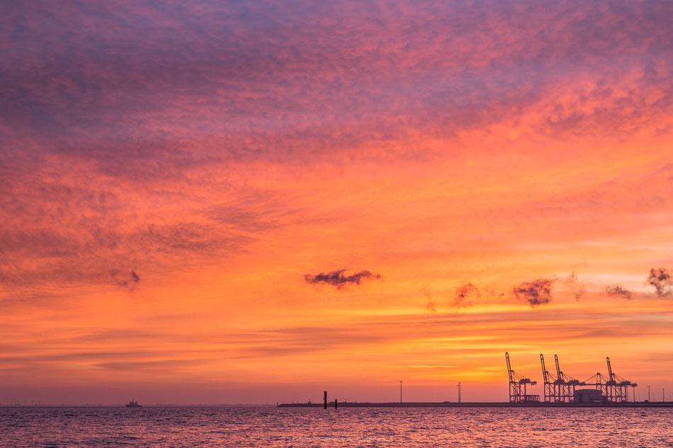 Sonnenaufgang am Jade-Weser-Port Wilhelmshaven.