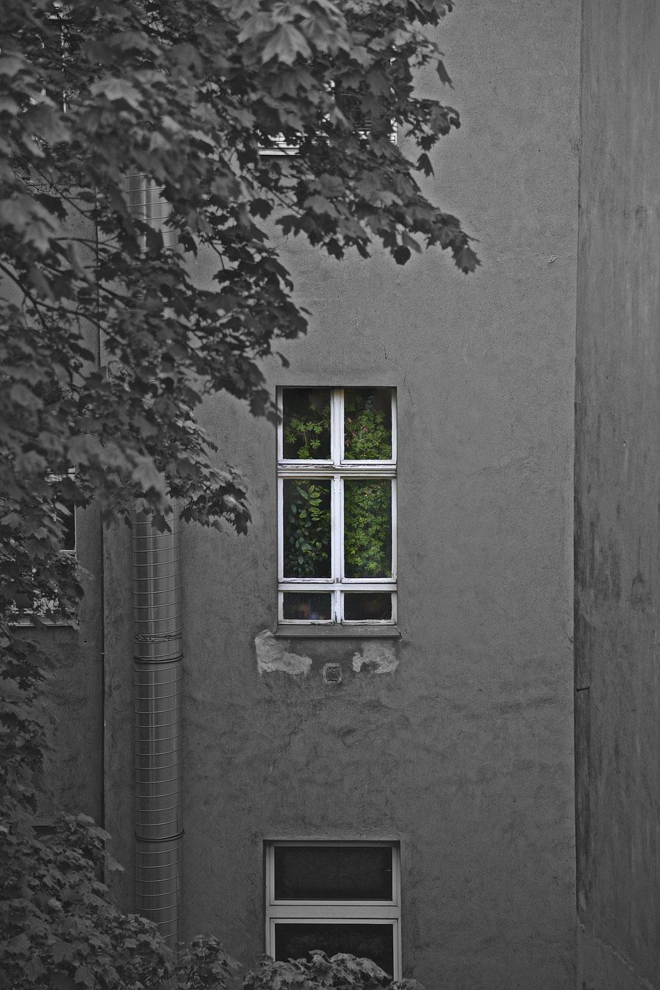 Berlin X