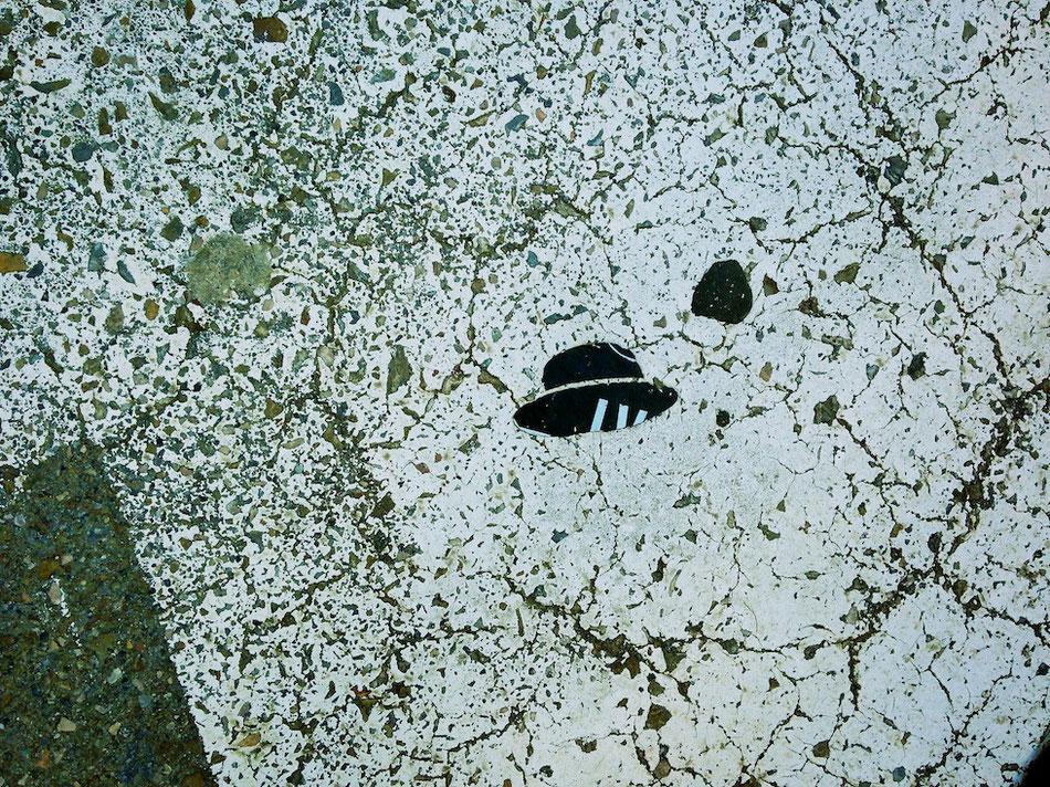 Foto: Sinnloses Motiv auf der Straße