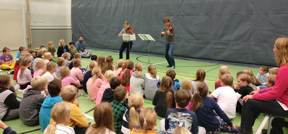musiker schule kinder violine viola rosenduo