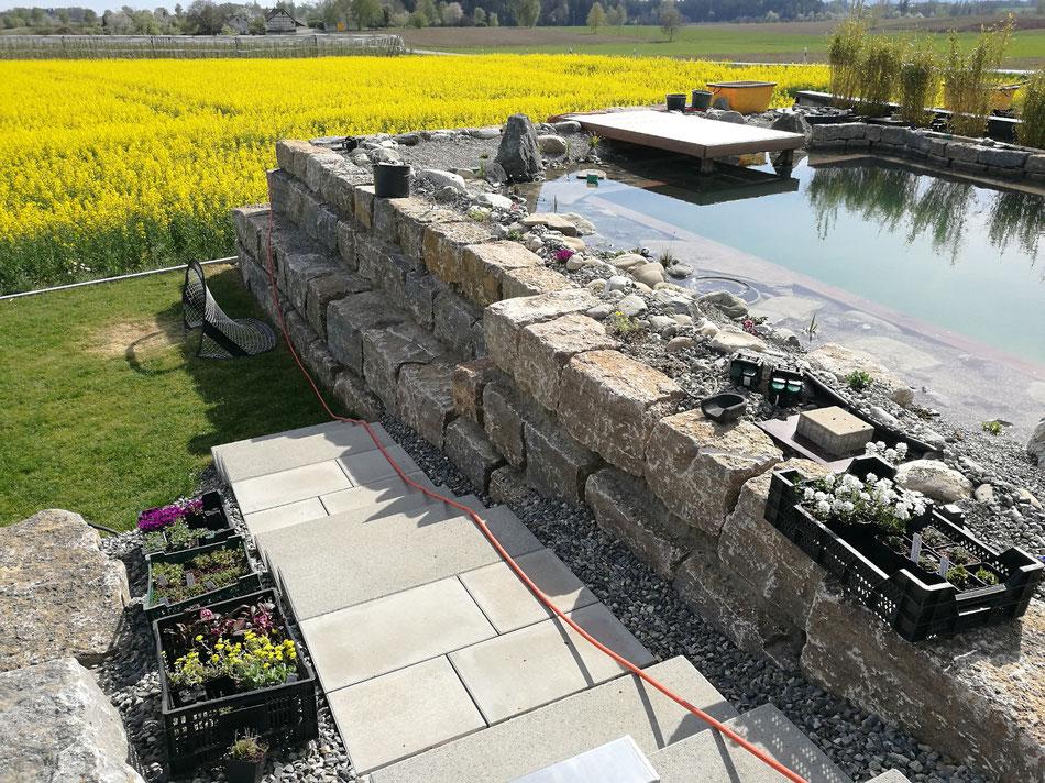 Schwimmteich vor Fertigstellung: es erfolgt die Bepflanzung Frühjahr 2020