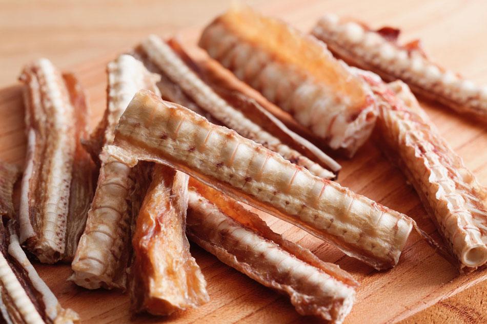 サメ軟骨(愛犬用おやつ) 50g