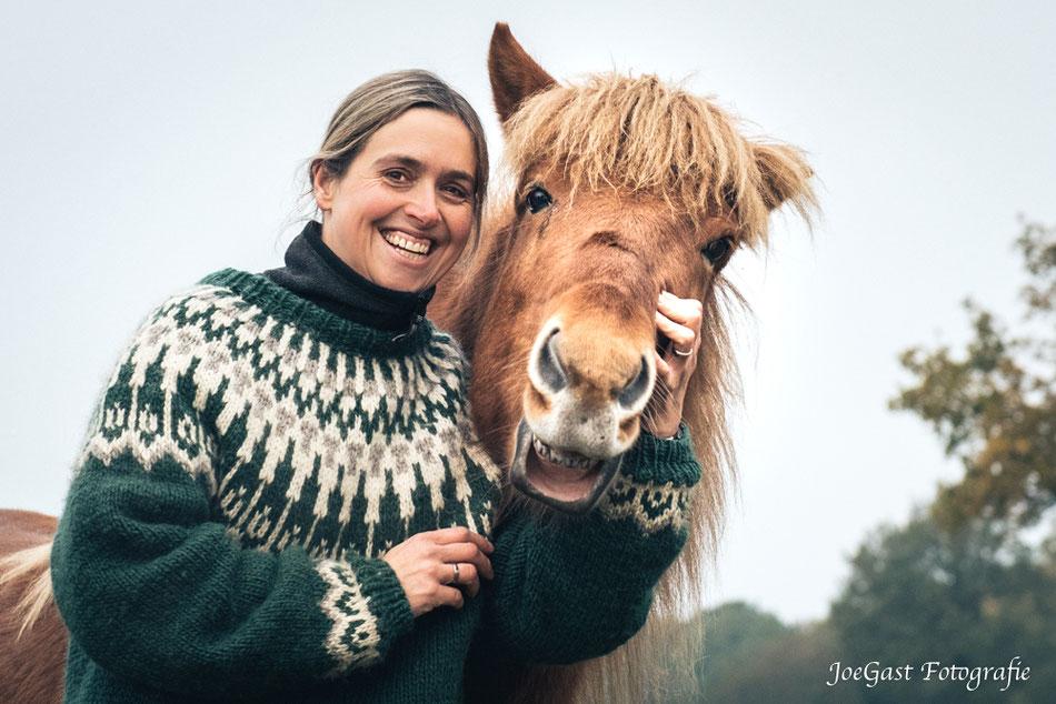 Pferd, Pferde,Island,Islandpferd,Islandpferde,Mensch und Tier,Freude,Pferdewelt,