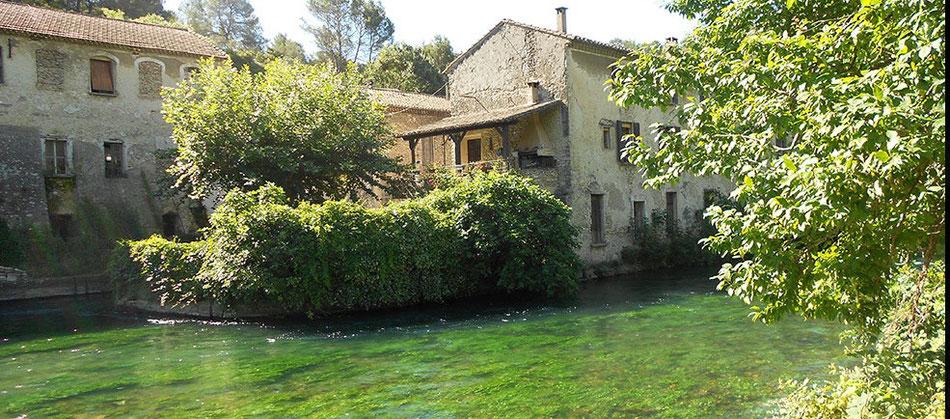grünes und frisches Wasser, das in Fontaine von Vaucluse herausspritzt und Sorgue Fluss das Leben schenkt