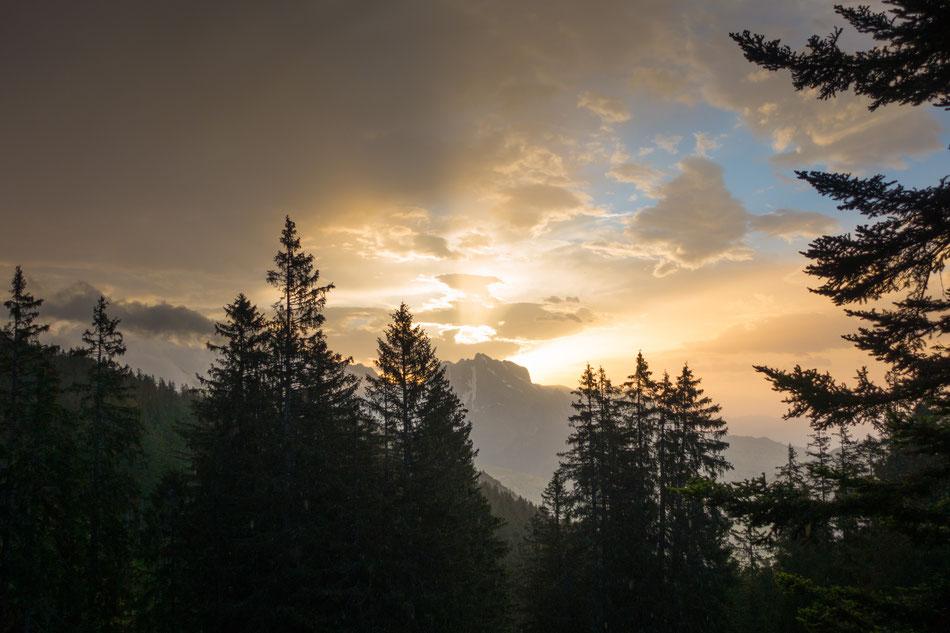 Sonnenaufgang Vorder Höhi