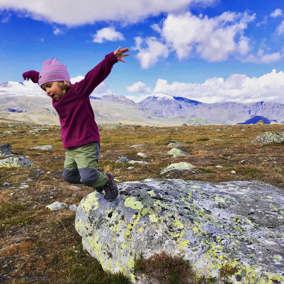 Blick auf Jotunheimen, Valdresflye