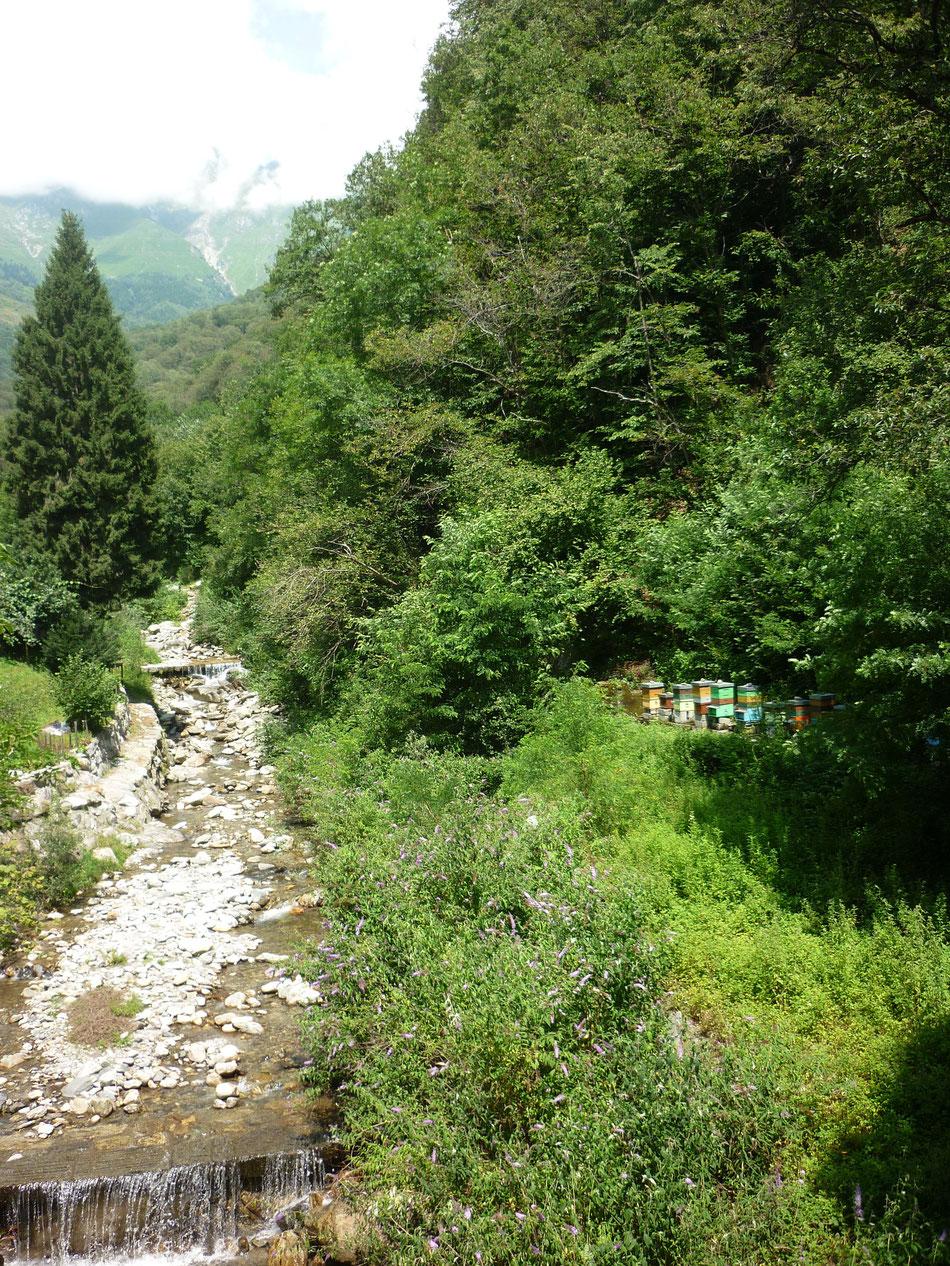 L'apiario e la Valle dei Mulini a Dosso del Liro