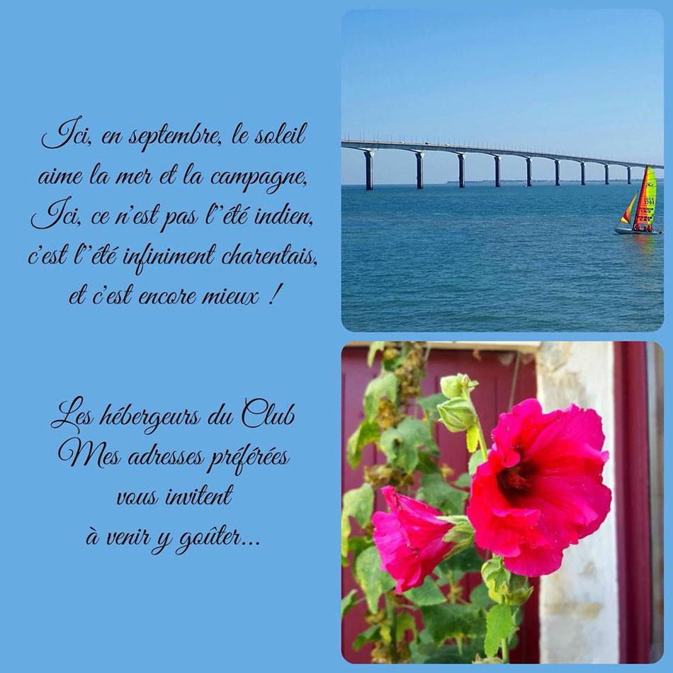 Septembre, lumineuse cinquième saison -#maisondhotes-#lacollegiale-#mesadressespreferees