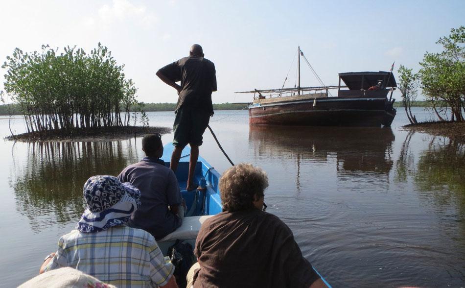 Mangroven-Tour bei Funzi Island