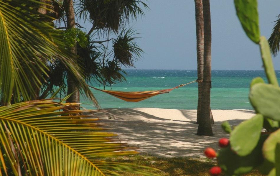 Mbuyu Beach: Sonne, Meer und Einsamkeit