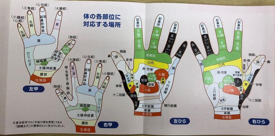 手の反射帯