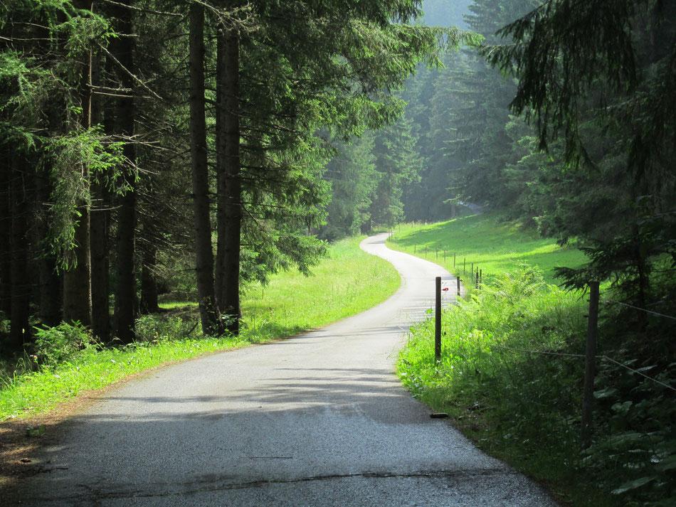 Un tratto della ciclabile San Candido - Lienz