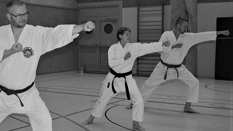 Kihon: Junzuki no tsukomi von Marco, Bärbel und Christoph