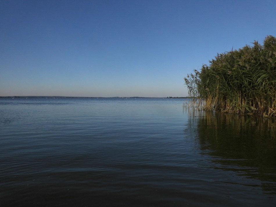 Blick über den Miedwie-See