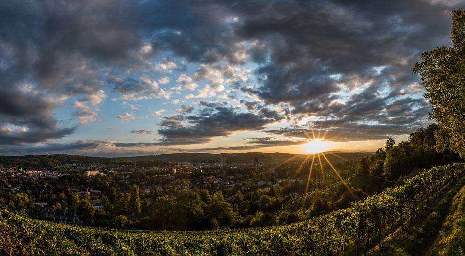Goldenberg Winterthur