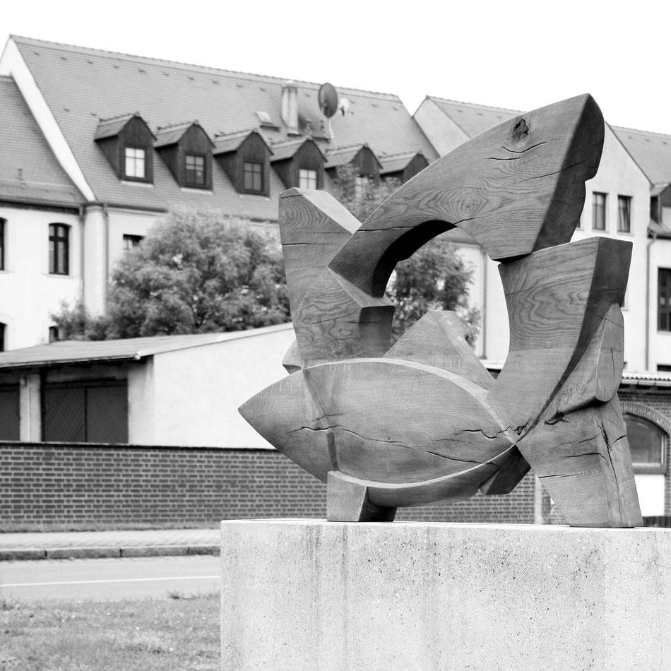 Artem Haag, Der Fisch