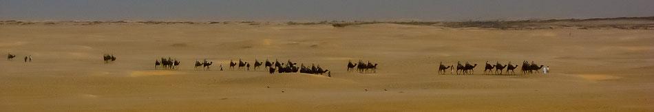 Wüstentour durch Tunesien