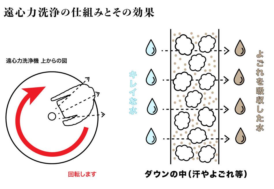 遠心力洗浄の仕組みとその効果。回転で汚れを出す。服の中を水が通過することによって服の中の汚れが水に吸収されて出ていく