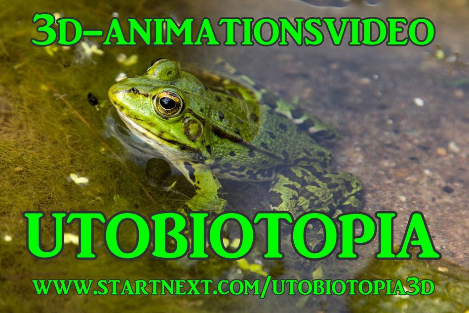 Utobiotopia-Frosch