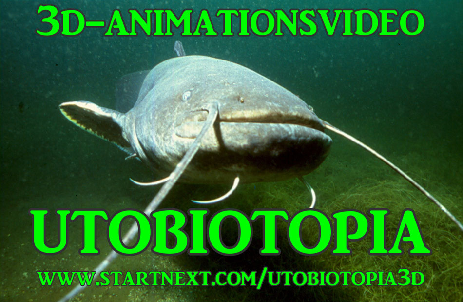 Utobiotopia-Wels