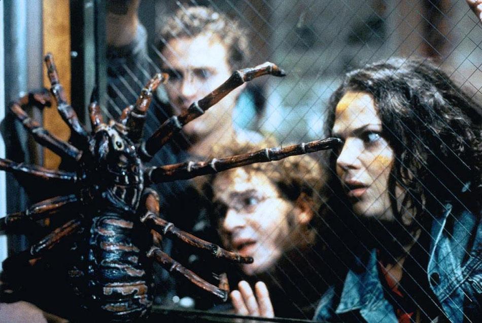 Spiders   Spider Attack - Achtbeinige Monster   USA 2000 ...