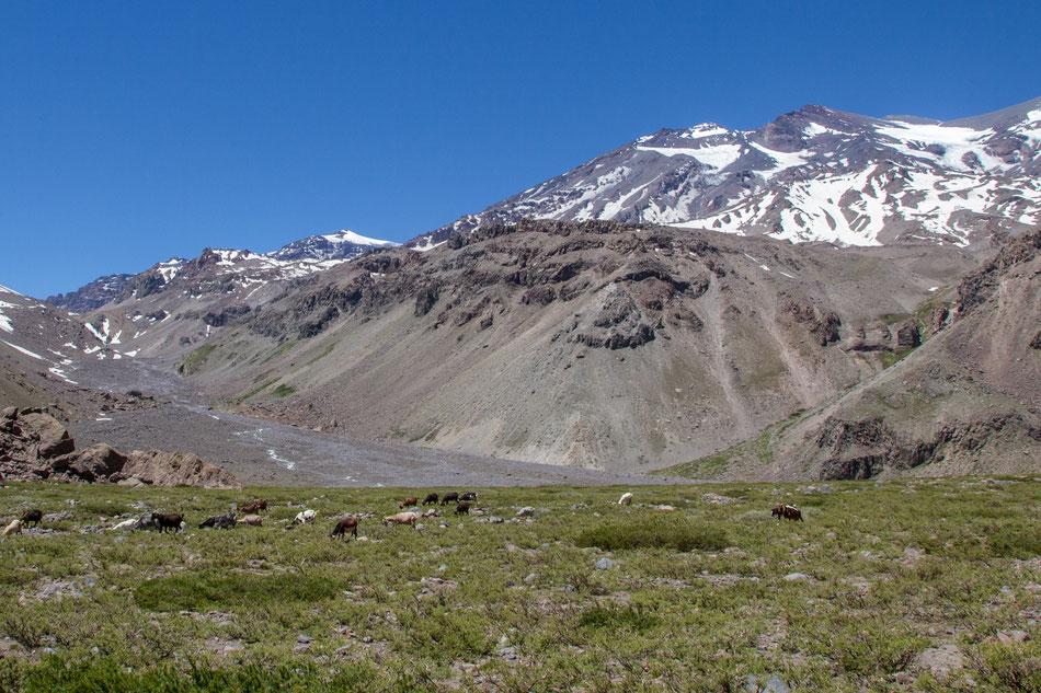 MARMOLEJO 6.108 m & EL PLOMO 5.430 m, Expeditionen in Chile, Expedition in Chile, Expeditionen,