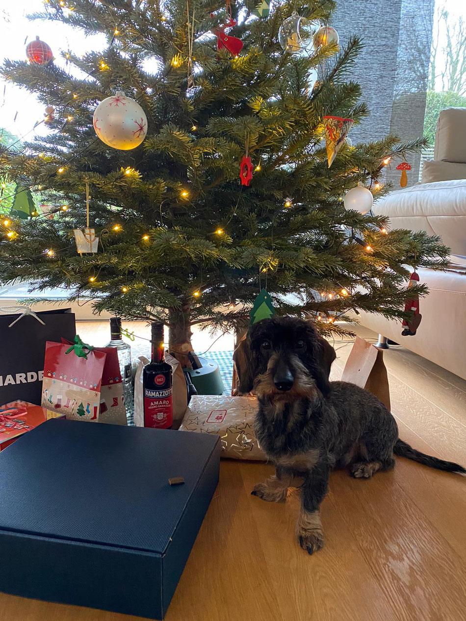 B-Vito & Familie wünschen ein schönes Fest und gemütliche Stunden unterm Weihnachtsbaum