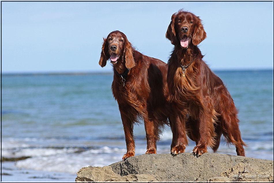 Erin und Sohn Glen an der Küste Northumberlands