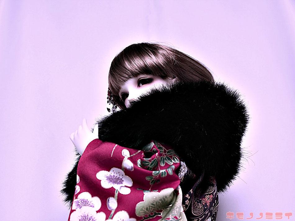 SD kimono,ドルフィー 通販,Dollfie 振袖