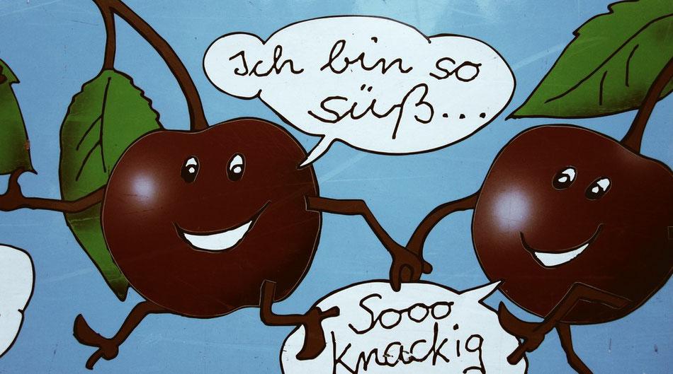 Freitag: Süße Kirschen aus dem Alten Land. Lecker!