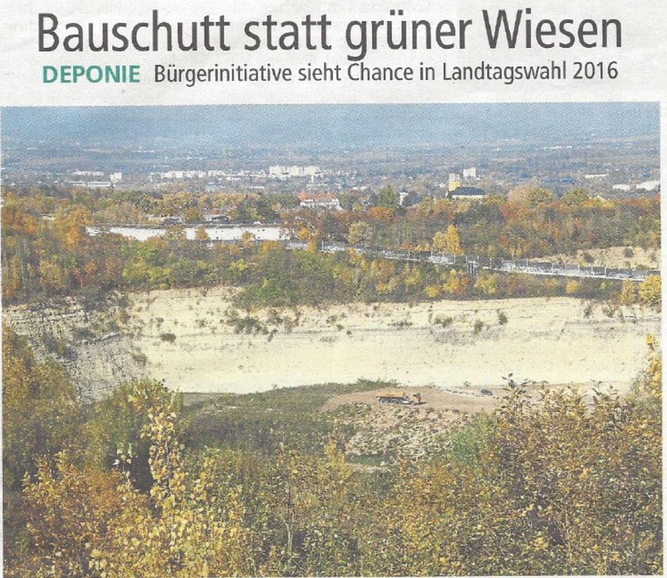 Hier sollen Bauabfälle entsorgt werde: der ehemalige Steinbruch Laubenheim/Weisenau.   Foto:Weygold