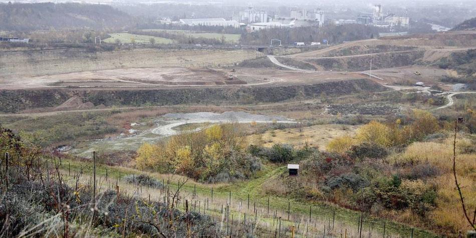 Seit der Verfüllung der Deponie Budenheim im Jahr 2010 hat die Stadt keine eigene Deponie für Bauschutt mehr. Als Lösung gegen den Entsorgungsengpass soll der Laubenheimer Steinbruch verfüllt werden. (Archivfoto: Harald Kaster)
