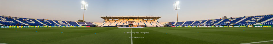 Estadio Municipal de Butarque, Leganés