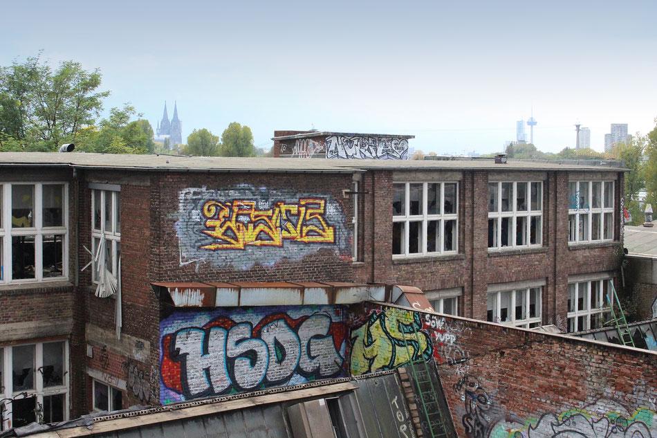 Blick vom Otto-Langen-Quartier. Foto: Eva Rusch