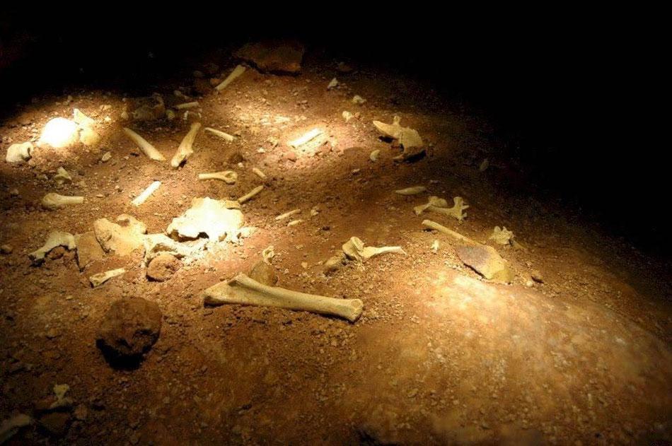 Recreación de la Sima de los Huesos Atapuerca, en Museo de la Evolución Humana , Burgos