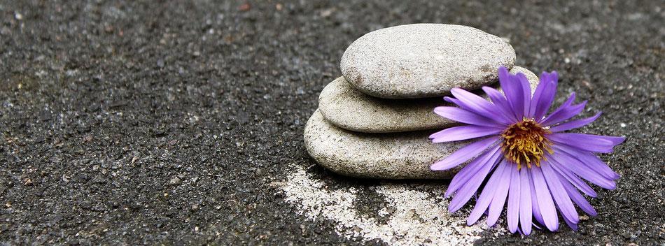 Sassi in equilibrio e accanto un fiore viola