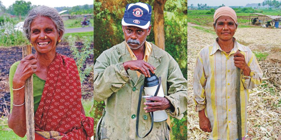Porträt | Tamil Nadu_ (Zuckerrohr) | Munnar (Tee) _Kerala